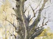 Acuarelas árboles