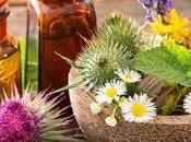 Remedios naturales para calmar