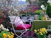 Flores otoño para terraza