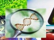 Medio Ambiente: Nanotecnología agricultura