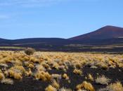 pampa negra volcanes dormidos. payunia. mendoza