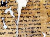 ¿Qué similar lengua fenicia hebrea?