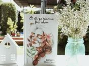 Reseña sueñes Flores salvajes Dulcinea (Paola Calasanz)