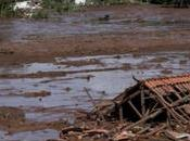 Amazonas para Vida crónica desastre anunciado