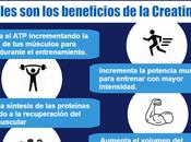 ¿Cuáles beneficios Creatina? [Infografía]