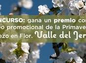 Concurso: gana premio vídeo promocional Primavera Cerezo Flor. Valle Jerte.