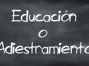 Educación Adiestramiento