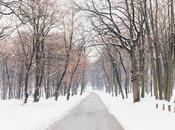 Inviernos estreno para otoños cansados