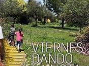 #VDLN 299: Baldosas amarillas
