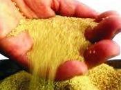 valor nutricional amaranto