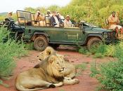 reserva privada Madikwe, joya escondida Sudáfrica