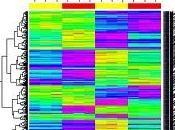 Usando para análisis microarrays