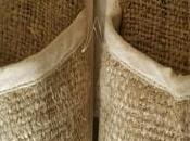 Cañamo, fibra textil sostenible