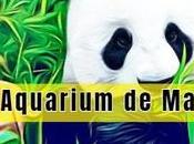 Visitar Aquarium Madrid