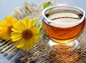 plantas medicinales para combatir faringitis