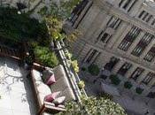 Jardines urbanos: Áticos