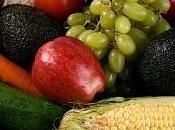 Cuatro consejos para sumar vegetales dieta chicos