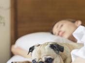 posición dormir puede causar aumento presión intraocular