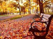 Cuando otoño muestra será duro invierno