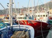 Pesca:Santoña bate récord descargas
