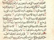 Historia Tecnologías Sociales (XI). consolidación conexión civilización Viejo Mundo (500 1500)