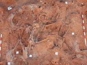 Exhumación cadáveres medio andar