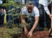 Etiopía: plantan millones árboles horas