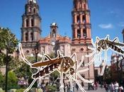 Luis Potosí sigue registrando casos dengue