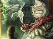 Como gato vos.