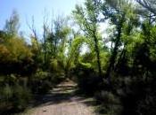 Caminos serranos