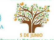 Mundial Medio Ambiente World Environment