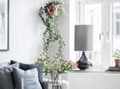 HOME TOUR atreves como cambia casa plantas?