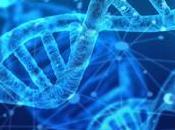 Conoce linaje como predisposición enfermedades test
