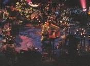 Nirvana Dumb (MTV Unplugged) (1994)