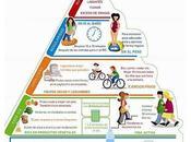 Pirámide salud digestiva