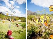 Árbol cámaras deshechables para boda
