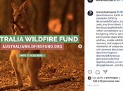 famosos hecho donaciones para combatir incendios Australia.