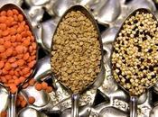 mejores fuentes vegetales proteínas dieta