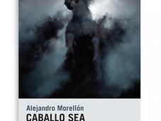 Alejandro morellón, caballo noche: inmaterialidad palabras