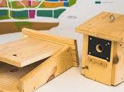 Colmenar Viejo instala cajas nido para aves murciélagos combatir procesionaria