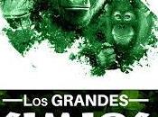 """Nuevo libro """"los grandes simios derechos básicos"""""""