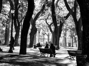 Foto Día. Añoranza