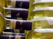 Guía para cata vinos blancos confinados