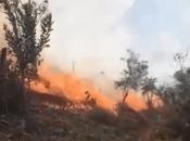 Descuido humano provoca incendio forestal Xilitla