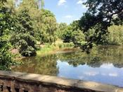 Parque Hampstead Heath: bosque dentro capital inglesa