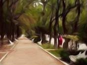 Planean sembrar árboles frutales liberar aves Parque Morales