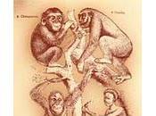 darwinismo social puede útil