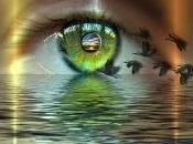 ¿Qué dimensiones? significa cambiar dimensión?
