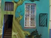 Talleres escuela bonsai asociación Vallés.
