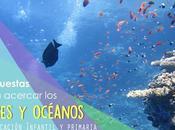 Recursos: Propuestas para conocer vida mares océanos